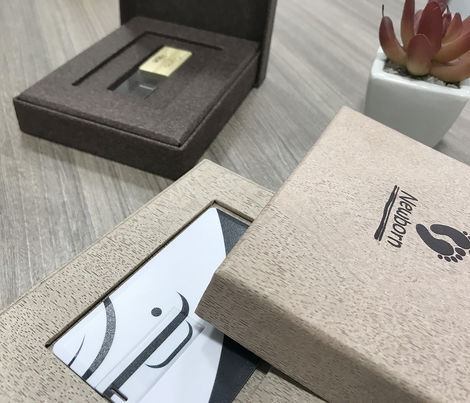 Box |  68 -  Pen Drive e Pen Card4
